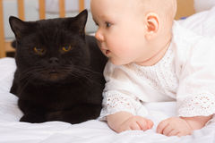 Cute baby with cat Stock Images