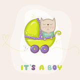 Cute Baby Cat in a Carriage - Baby Shower or Arrival Card Stock Image