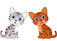 Cute baby cat cartoon Stock Photography