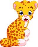 Cute baby cheetah cartoon Royalty Free Stock Photos