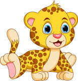 Cute baby cheetah cartoon Royalty Free Stock Images
