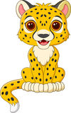 Cute baby cheetah sitting isolated on white background Royalty Free Stock Photography