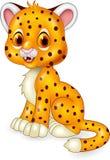 Cute baby cheetah sitting  on white background Stock Image