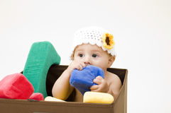 Cute Baby Chewing on Toy royalty free stock images