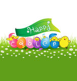 Cute baby chicken and colorful eggs for easter day card Stock Photography