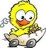 Cute baby chicken driving in a eggshell. Hand-drawn Vector illustration of an cute baby chicken driving in a eggshell Royalty Free Stock Photography
