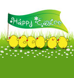 Cute baby chicken with happy easter flag on green grass Stock Images