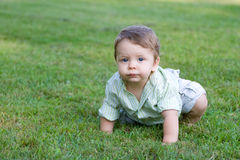 Cute Baby Crawling Royalty Free Stock Photos