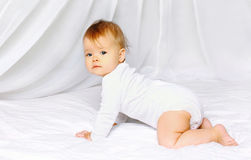 Cute baby crawling Stock Images