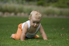 Cute baby crawling on grass. Adorable baby with white vest crawling on grass, looking straight ahead Royalty Free Stock Image