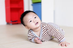 Cute Baby crawling on livingroom floor. Cute Baby crawling on living room floor with home background, baby is a cute asian infant stock images