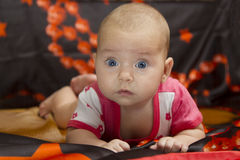 Cute baby crawling over bed. Small cute child surprised, raised his head and crawling on a dark bed Stock Photography