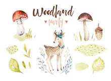 Cute baby deer animal nursery isolated illustration for children. Watercolor boho forest drawing, watercolour, image Stock Photo