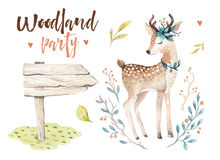 Cute baby deer animal nursery isolated illustration for children. Watercolor boho forest drawing, watercolour, image vector illustration