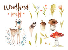 Cute baby deer animal nursery isolated illustration for children. Watercolor boho forest drawing, watercolour woodland Royalty Free Stock Photos