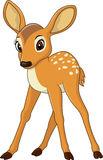 Cute baby deer. Illustration of Cute baby deer Royalty Free Stock Photography