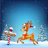 Cute baby deer running with a north pole wooden sign Stock Image