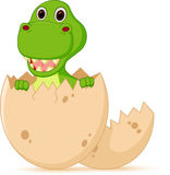 Cute baby dinosaur cartoon hatch Royalty Free Stock Image