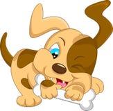 Cute baby dog cartoon with bone Royalty Free Stock Photo