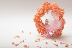 A cute baby doll sitting in a artificial fancy flower garland on. A cute baby doll sitting in a artificial fancy flower garland with pink feather  on white Royalty Free Stock Photos