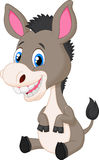 Cute baby donkey cartoon Stock Photography