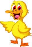 Cute baby duck cartoon Royalty Free Stock Photos