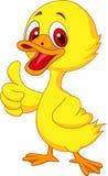 Cute baby duck cartoon thumb up Royalty Free Stock Photos