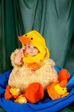 Cute Baby In Duck Costume. An adorable kid in a duck costume sits and ponders life beyond the pond. Studio portrait with a green backdrop and a blue towel as the royalty free stock image