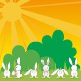 Cute baby Easter bunny Stock Photos