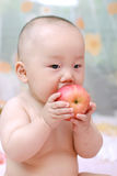 Cute baby eat apple Stock Photography
