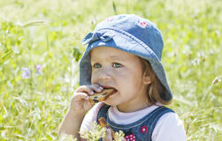 Cute baby eating crackers on green grass. Outdoors in spring park stock photography