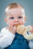Cute Baby Eating a Toy Royalty Free Stock Photo