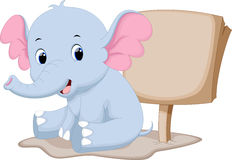 Cute baby elephant cartoon. With a blank sign Stock Photography
