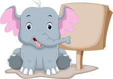 Cute baby elephant cartoon. With a blank sign Royalty Free Stock Image