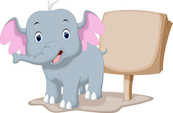 Cute baby elephant cartoon. With a blank sign Stock Images