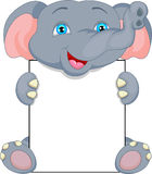 Cute baby elephant cartoon and blank sign Stock Photo
