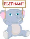 Cute baby elephant cartoon Royalty Free Stock Photography