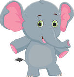 Cute baby elephant cartoon. Vector illustration of Cute Cute baby elephant cartoon isolated on white Stock Photography