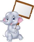 Cute baby elephant holding blank sign Royalty Free Stock Photos
