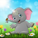 Cute baby elephant sitting on grass background royalty free illustration