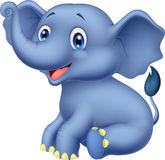Cute baby elephant sitting Royalty Free Stock Photos