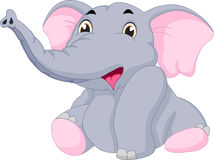 Cute baby elephant Stock Images