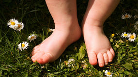 cute baby feet on grass. Stock Images