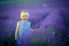 Cute baby in the flowering field of lavender. Cute baby in the flowering field of lavender stock photo