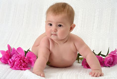 Cute baby with flowers Royalty Free Stock Image