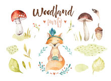 Cute baby fox animal nursery isolated illustration for children. Watercolor boho forest drawing, watercolour woodland Royalty Free Stock Photos