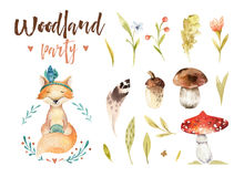 Cute baby fox animal nursery isolated illustration for children. Watercolor boho forest drawing, watercolour woodland stock illustration