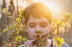 Cute baby with freckles on her face breathes spring fresh air stock photography