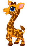 Cute baby giraffe cartoon Royalty Free Stock Image