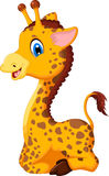 Cute baby giraffe cartoon sitting for you design Stock Image
